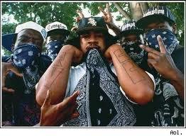 black gangs