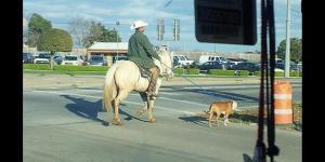 Texas one