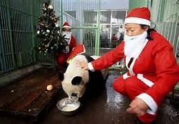 Chinses Santa