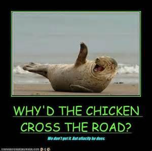 chicken one