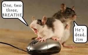 mouse joke