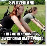 gun control switz