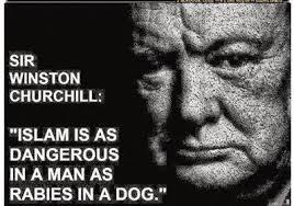 Churchill google