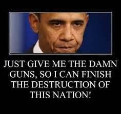 obama and guns