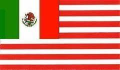 Flag of Amero