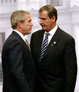 Fox and Bush