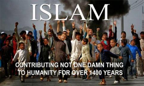 Islam-contributions