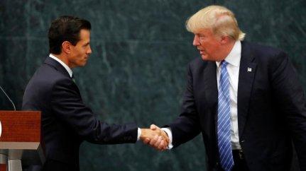 Trump and Pina