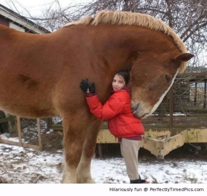 a-big-hug-resizecrop